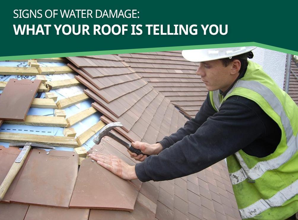 Signs of Water Damage: What Your Roof is Telling You